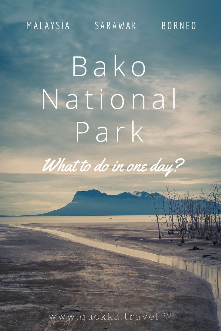 Bako National Park on Sarawak, Borneo in Malaysia. Considering the short distance from Kuching, Bako National Park is ideal for a one or two-day travel trip! Read our travel tips to make the most of it ♡