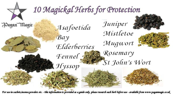 10 Magickal Protective Herbs for use in Powders, Sachets, Incense etc