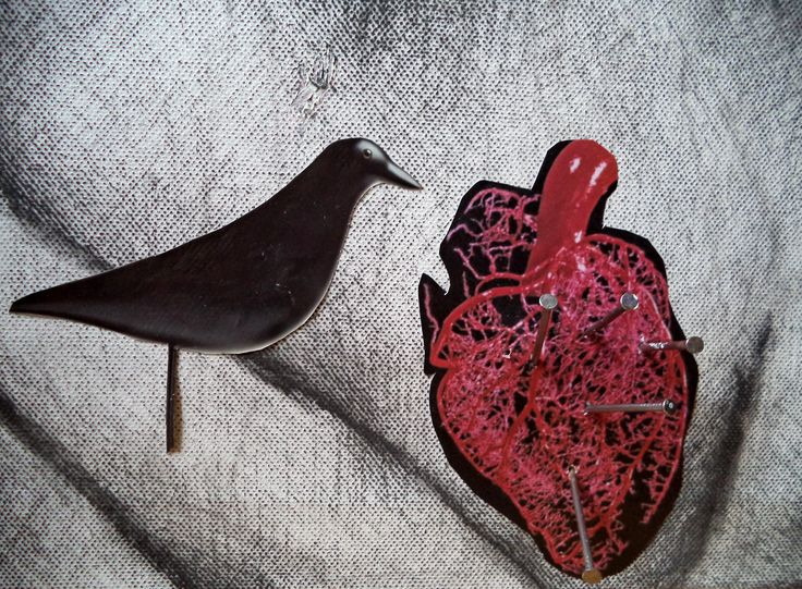 Kelly Mentzou, My death, 2015, charcoal pencil, paper, peacock feather, plastic, nails, photographs and colored pencils on canvas (mixed media), 70 x 50 cm (detail) // My death, Kelly Mentzou (2015) | *New ART work* http://www.dlfineartsgallery.com/asset-viewer/κέλλυ-μέντζου-my-death-2015-μολυβοκάρβουνο-χαρτί-φτερό-παγωνιού-πλαστικό-καρφιά-φωτογραφίες-και-χρωματιστά-μολύβια-σε-μουσαμά-μικτή-τεχνική-70-x-50-cm/RAGsuiq16SgGPg?exhibitId=QQKyYTcAO_qpIg
