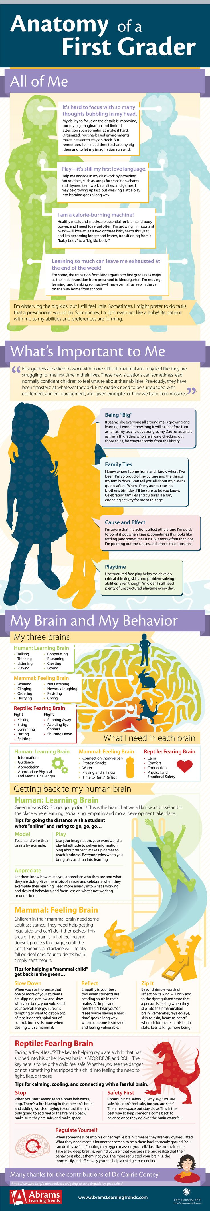 "#Infographic with physical, social, cognitive, and emotional norms for #firstgrade. Awesome info! Often caught between being little and wanting to feel ""big"", first grade can be a challenging time. For many, it's the first time that learning becomes somewhat difficult. Children who expressed confidence in kindergarten may display new anxieties and self-confidence issues."