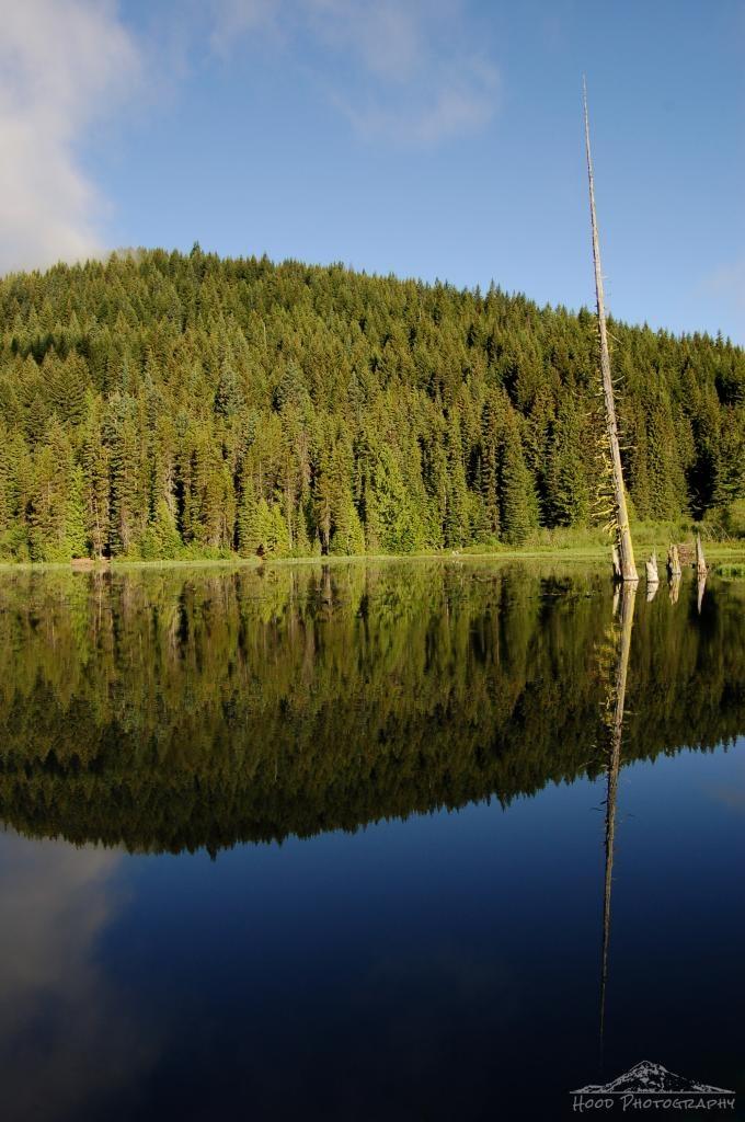 Hood Photography: Watery Reflection