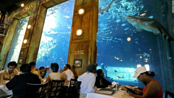 Africa's 6 Most Unusual Eateries-Chicamod