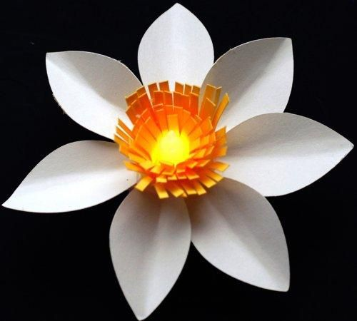 DIY Construction Paper : DIY Paper flower tealight party decoration