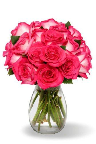 18 Long Stem Bi Color Pink Roses With Vase About The