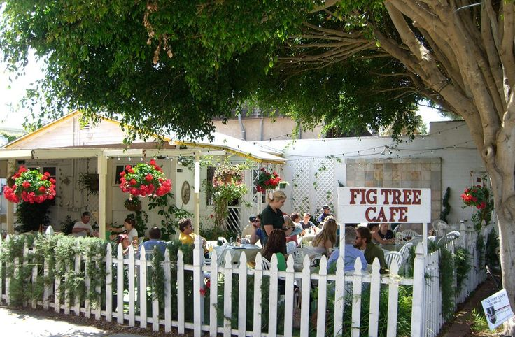 Fig Tree Cafe as the BEST Brunch ...