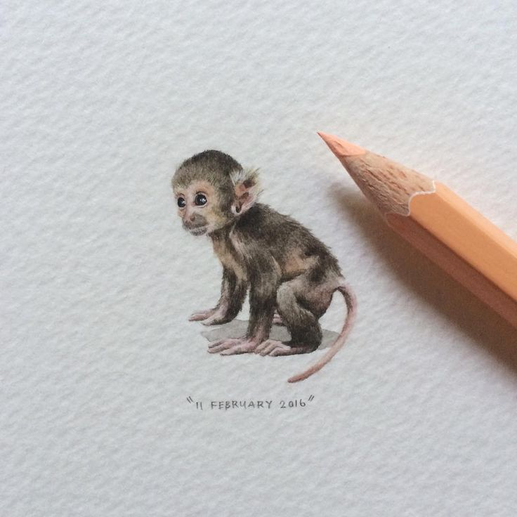 Best 25 monkey tattoos ideas on pinterest for Year of the monkey tattoo