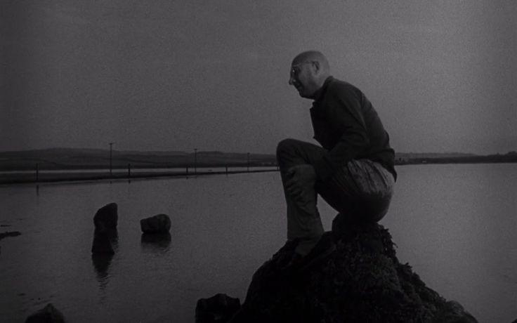 Donald Pleasence in Cul-de-sac (1966, Roman Polanski)   Source - IMDb