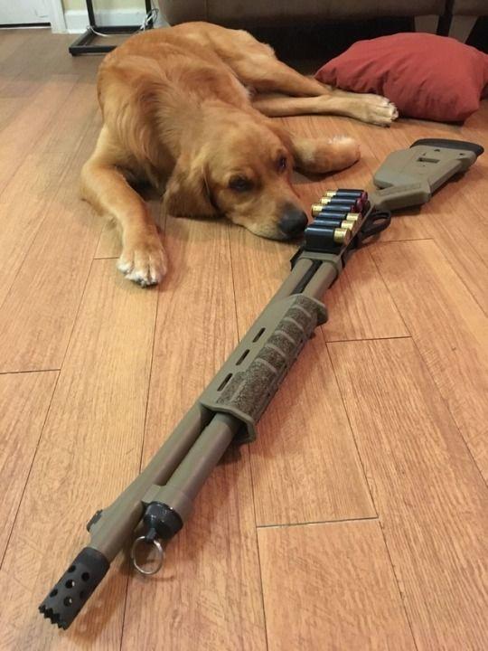 Remington 870 Shotgun http://riflescopescenter.com/category/barska-riflescope-reviews/