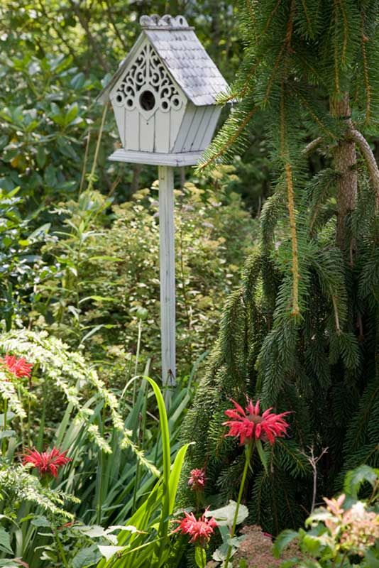 High Quality 5 Tips For Creating A Gorgeous Garden