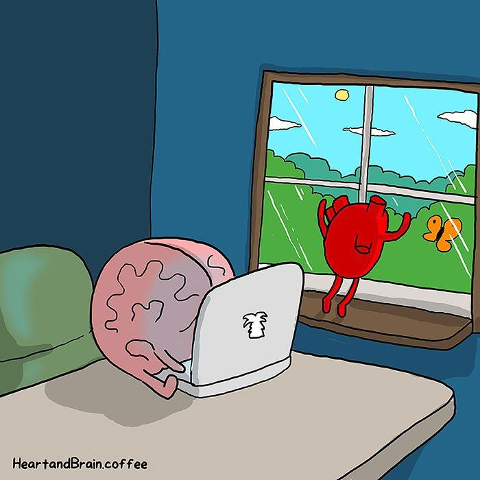 Nick Seluk corazon cerebro heart brain