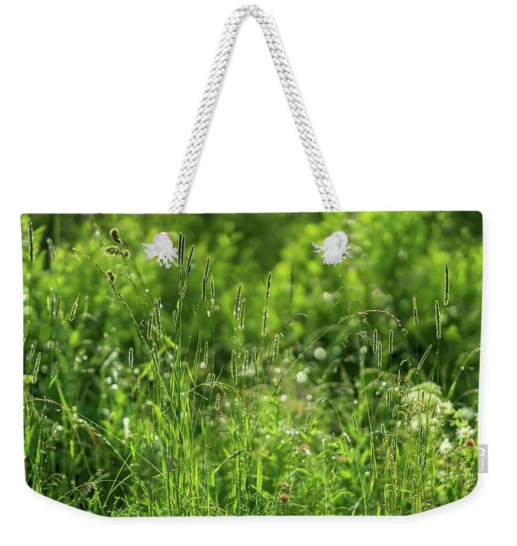 Green Idyll Weekender Tote Bag Green idyll by Svetlana Iso     ...How green, green is the grass   After a morning of raining   #SvetlanaIso #SvetlanaIsoFineArtPhotography #Photography #ArtForHome #InteriorDesign #FineArtPrints #Home #Gift #Relax #FengShui #Color  #Green #Tote