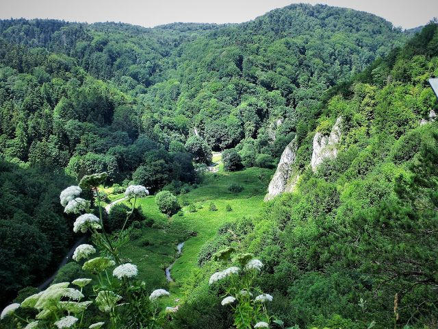 WWW Wiersze Wycieczki Wspomnienia: Ojcowski Park Narodowy: Jaskinia Ciemna, Brama Krakowska