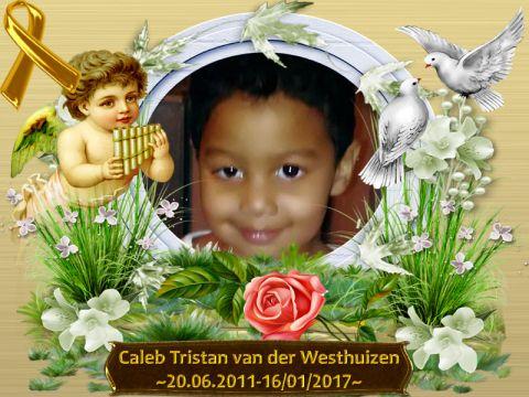 rip-caleb