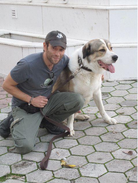 Εκπαίδευση σκύλου στην Αθήνα από τη Valkanas Dogs. Μάθετε περισσότερα στο http://www.valkanasdogs.gr