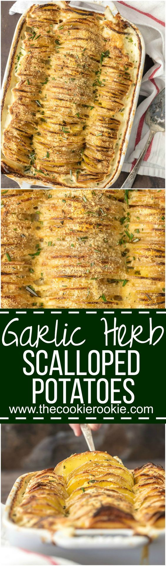 These CHEESY GARLIC HERB SCALLOPED POTATOES are one of our favorite holiday side dishes! Made creamy with a secret ingredient that you'll never skip again! Beautiful and delicious potatoes gratin!