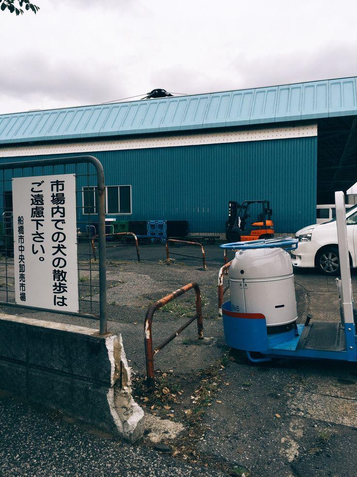 船橋 鮮魚市場