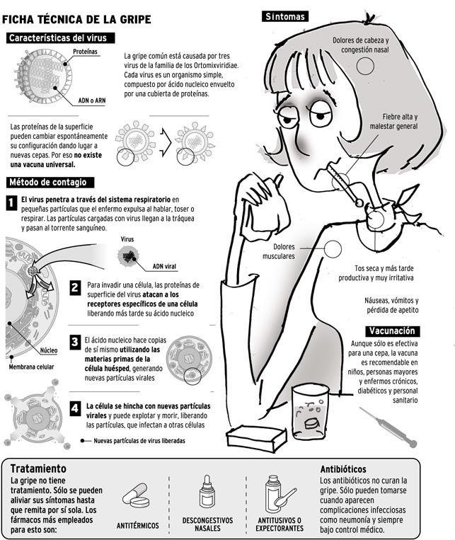 Todo lo que hay que saber de la gripe. #gripe #salud #infografia