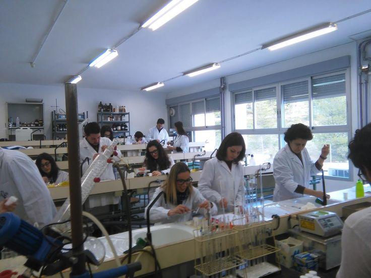 Chemistry VET Pare Vitoria