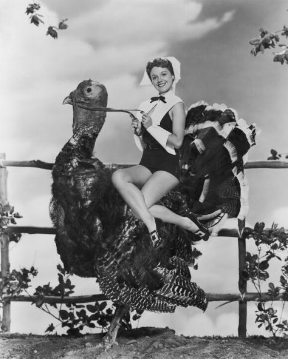 Nothing Says Happy Thanksgiving Like A Scantily Clad Pilgrim Maiden Riding Giant Turkey