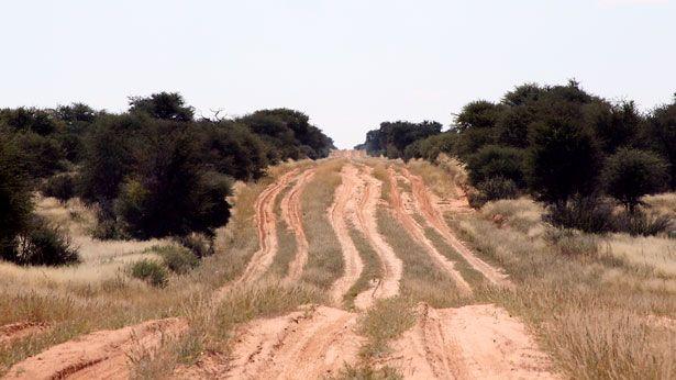 """Streets"" in the Mabuasehube Area | Botswana"