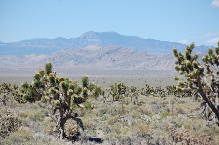 Nevada har en blodig forhistorie.