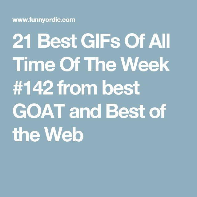 21 Best GIFs Of All Time Of The Week #142 from best GOAT and Best of the Web