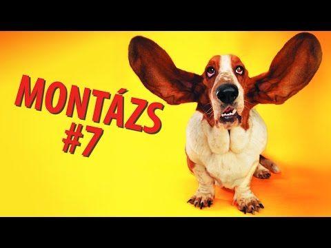 ▶ Videómánia Montázs #7 - YouTube