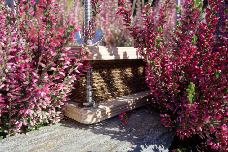 Купить Пресс для гербария - пресс, пресс для цветов, пресс для гербария, товары для шполы, для творчества, для школьника