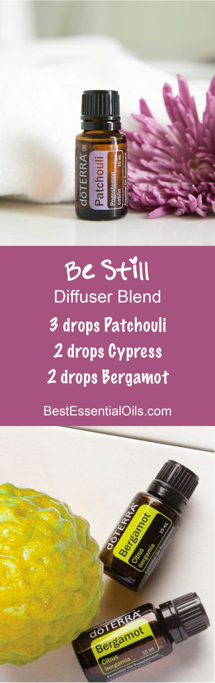 Best 25 Doterra Ideas On Pinterest Doterra Blends