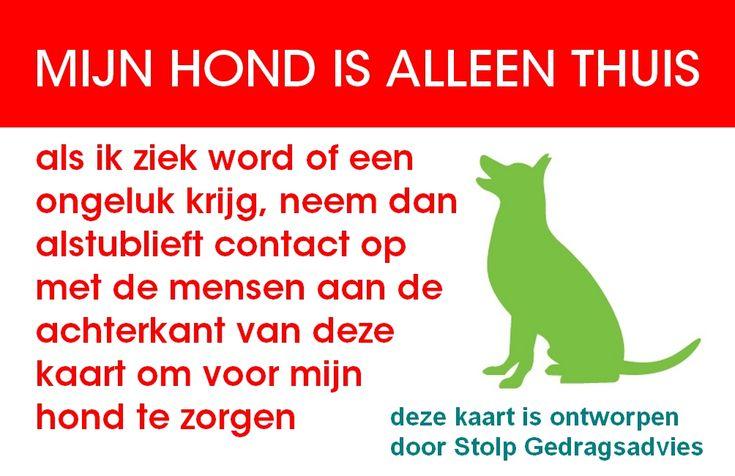 Voorkant van de veiligheidskaart voor in de portemonnee, zo kan een hulpverlener gelijk zien dat er honden alleen thuis zitten als je een ongeluk krijgt!