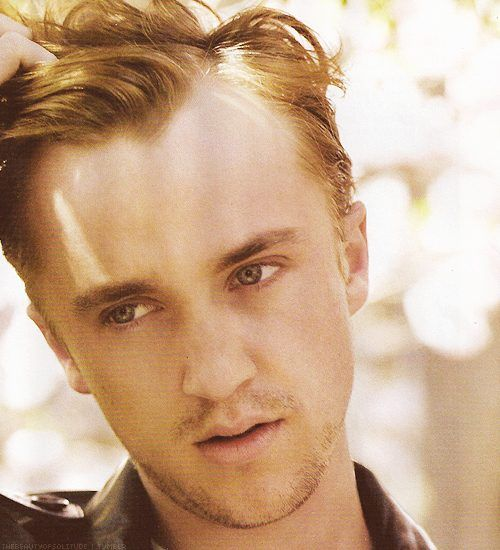 Best 25+ Draco Malfoy Actor Ideas On Pinterest