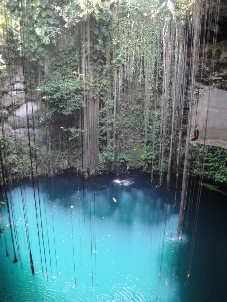 Beautiful cenote in Akumal Mexico. have to find this if i make it back