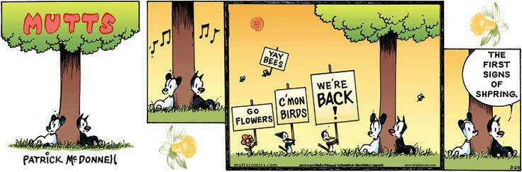 Chick all comic strip mutts archives