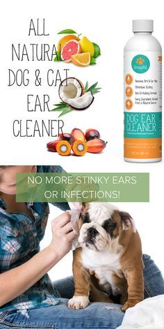 All-Natural OmegaPet Dog Ear Cleaner | Contains coconut oil and citrus extracts. Treats infections and ear mites fast - cutting ear wax, dirt and grime almost instantly. Works great on both dogs and cats. Explore our dog grooming collection at myomegapet.com/... | Dog Pet Supplies + Health Products | Animals