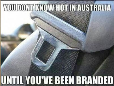 When your car is out to get you: | 21 Things That Make Australians Feel Personally Attacked