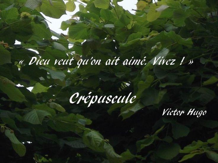 Crépuscule, un poème extrait des « Contemplations » de Victor Hugo (1802-1885), dit par Pierre-François Kettler. Il a été proposé au bac français 2014.