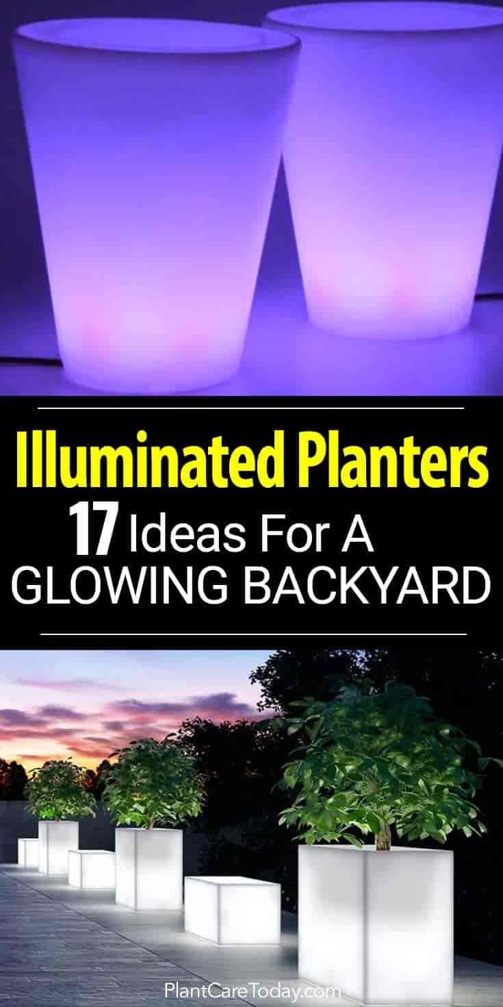 17 Illuminated Planters How To Make A Glowing Romantic Backyard Romantic Backyard Backyard Landscaping Backyard