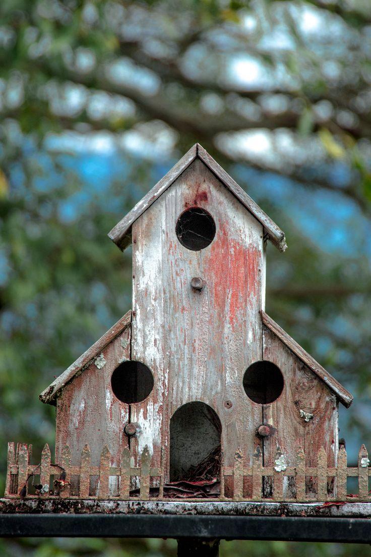 Old birdhouse 1098 best Birdhouses and Feeders