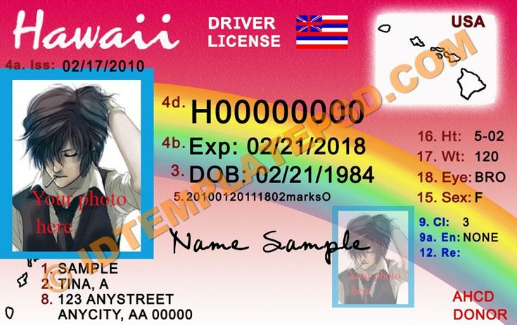 31 best driver license templates