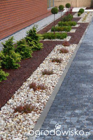 Ogród mały, ale pojemny;) - strona 56 - Forum ogrodnicze - Ogrodowisko