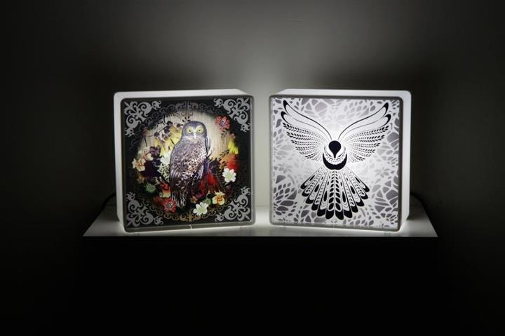 These are amazing lightboxes by Flox (www.flox.co.nz).  These were commissioned for the Fly My Pretties IV Tour last year.  We have the one on the left. Fantastic!