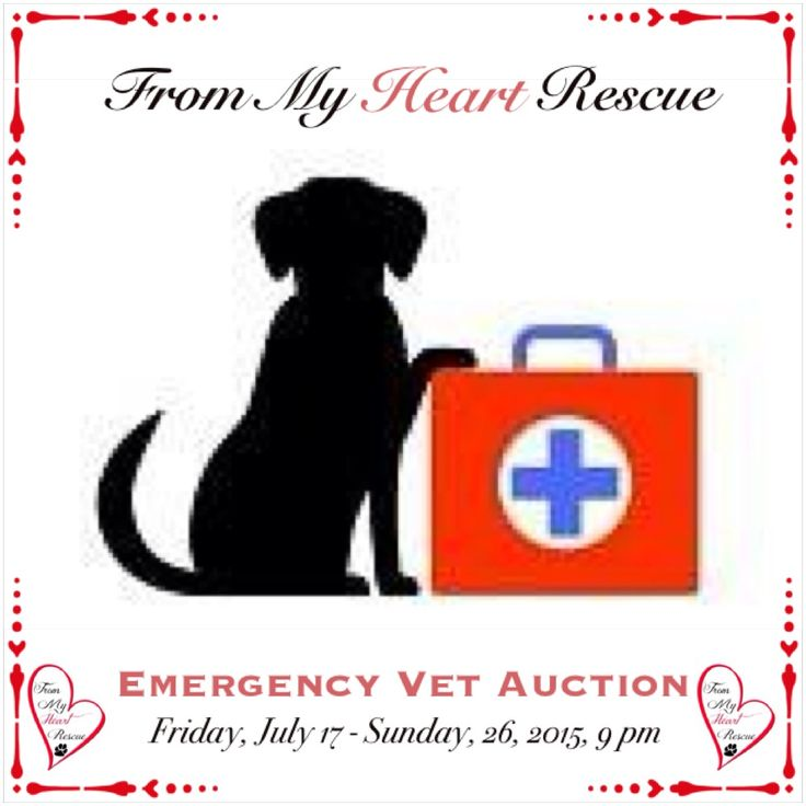 #Please ❤️+ #PIN #FromMyHeartRescue #RescueWithoutBorders #SavingOneDogAtaTime ~ #Emergency #Vet #FB #Auction  *www.facebook.com/FromMyHeartRescueOnlineAuction *To donate a gift certificate/gift basket donation: frommyheartrescue@hotmail.com  ~www.frommyheartrescue.com ~www.petfinder.com/shelters/ON441.html *Find us: FB, Twitter, Instagram, Youtube & Google+
