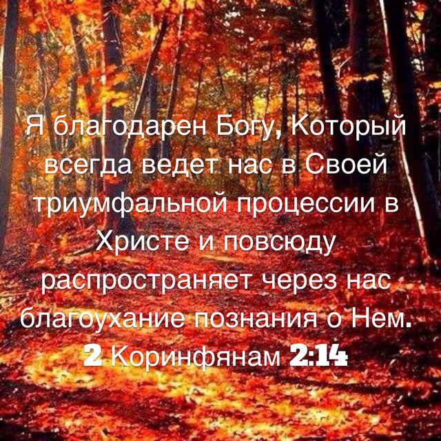 Я благодарен Богу, Который всегда ведет нас в Своей триумфальной процессии в Христе и повсюду распространяет через нас благоухание познания о Нем. (2 Коринфянам 2:14 RSZ)