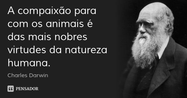A compaixão para com os animais é das mais nobres virtudes da natureza humana. — Charles Darwin