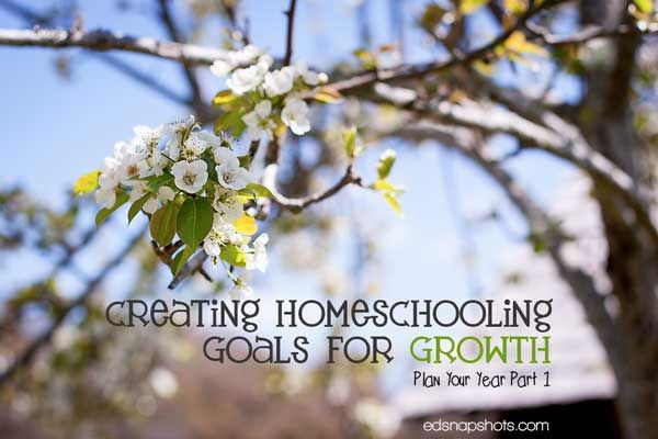 Creating Homeschooling Goals for Growth: Plan Your Year Part 1 Great blog--go back and look more, D!