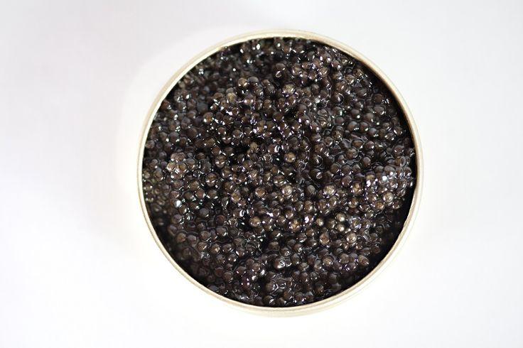Classic California White Sturgeon Caviar