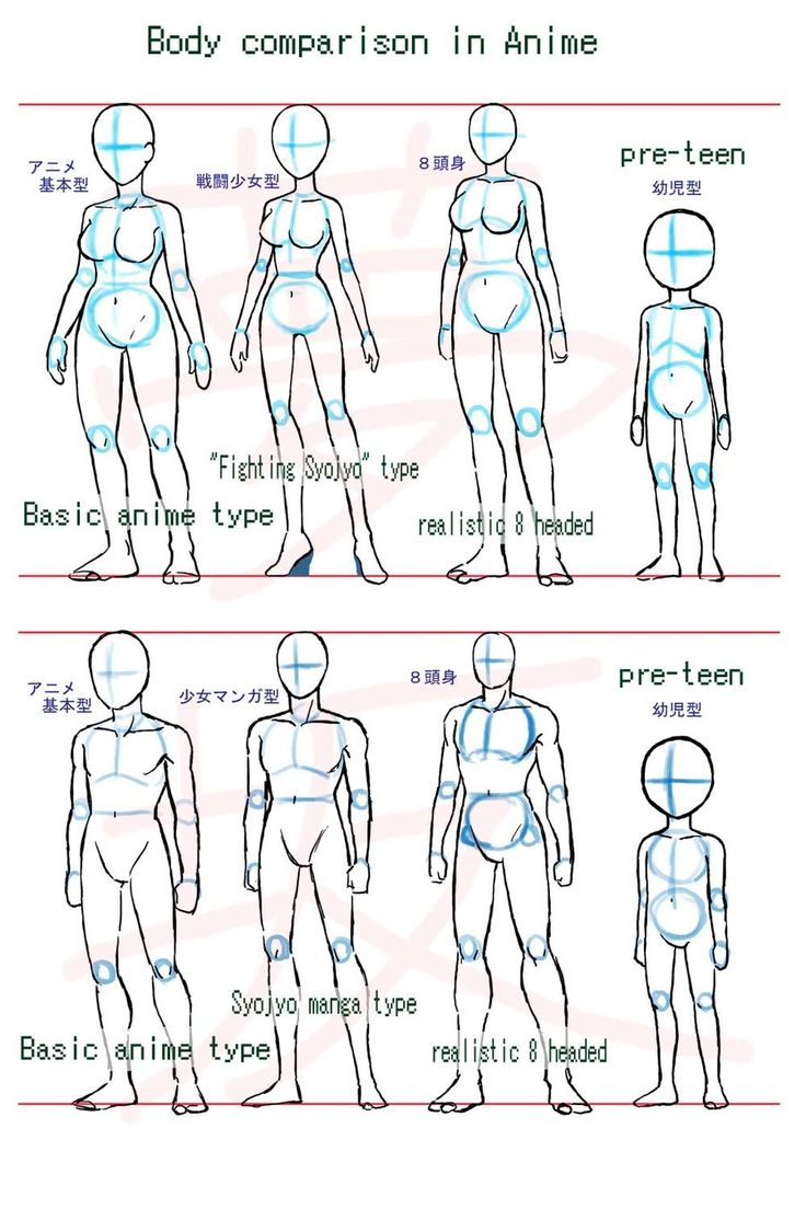 Anime body style comparison by ~Yumezaka on deviantART
