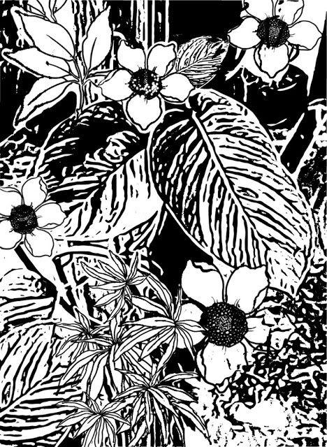 Sketch Graphic Design: Free Sketch Jungle Tropical 6