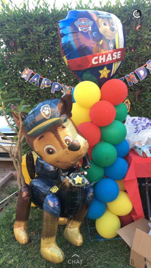 Best paw patrol balloon decor images on pinterest