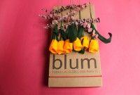 Caja de tulipanes Amarillo Quemado  hechos a mano Cel o Whatsapp 3105802725